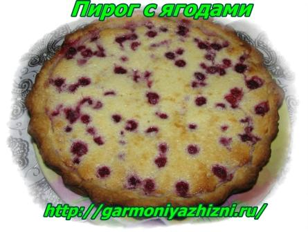 пирог с ягодами11