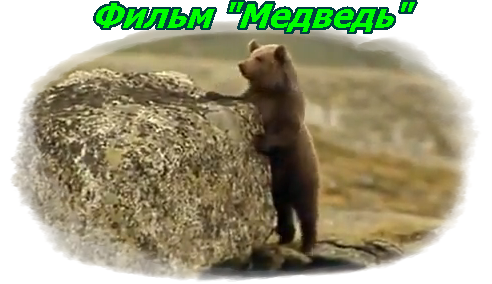 отзыв на фильм медведь