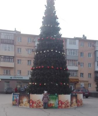 ель на площади Труда