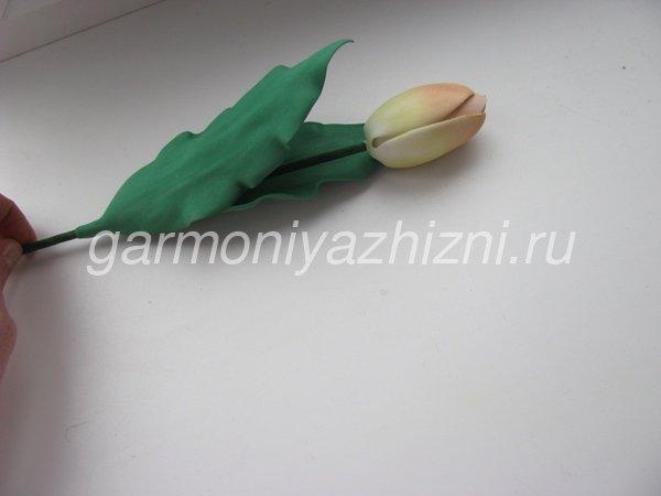 закрытый тюльпан из фоамирана