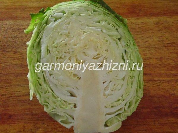 чем полезна белокочанная капуста