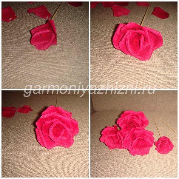 собираем 5 роз из бумаги