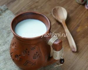 полезно ли молоко взрослому человеку