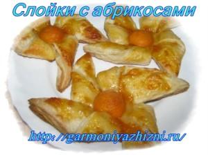 vertushki-s-abrikosami-300x224