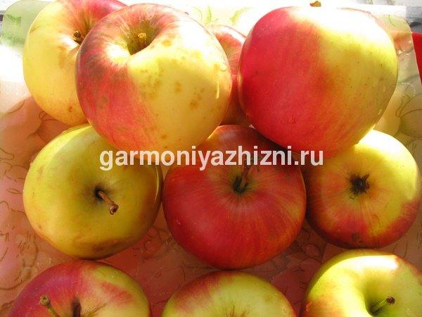 яблоки к завтраку