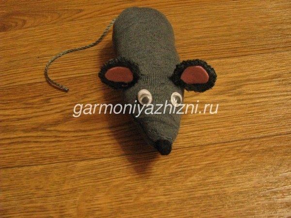 крыса из носка